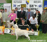Res. BEST IN SHOW - CACIB Brčko - CCD Powderpuff - Ich. Cody z Haliparku, Judge: Refet Hadžič, BiH