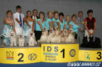 z Haliparku CCD breeders group - 2nd place CACIB Bratislava 19.8.2007. Thanks to judge Enrique Mate Duran from Spain!!!